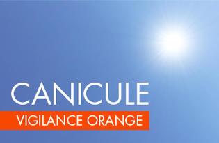 CANICULE VIGILANCE ORANGE